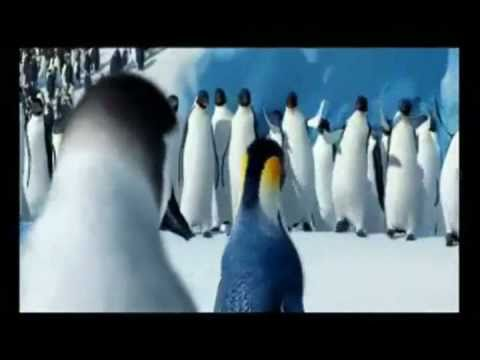 Pinguins Riverdance