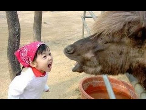 Fun met kinderen en dieren! 1
