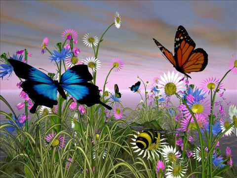 Elly & Rikkert - Soms zou ik willen vliegen als een vlindertje 8