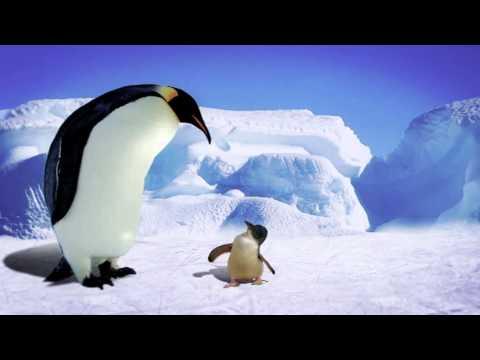 Pinguinfilmpjes online kijken