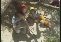 Elly & Rikkert - Kauwgomballenboom 6