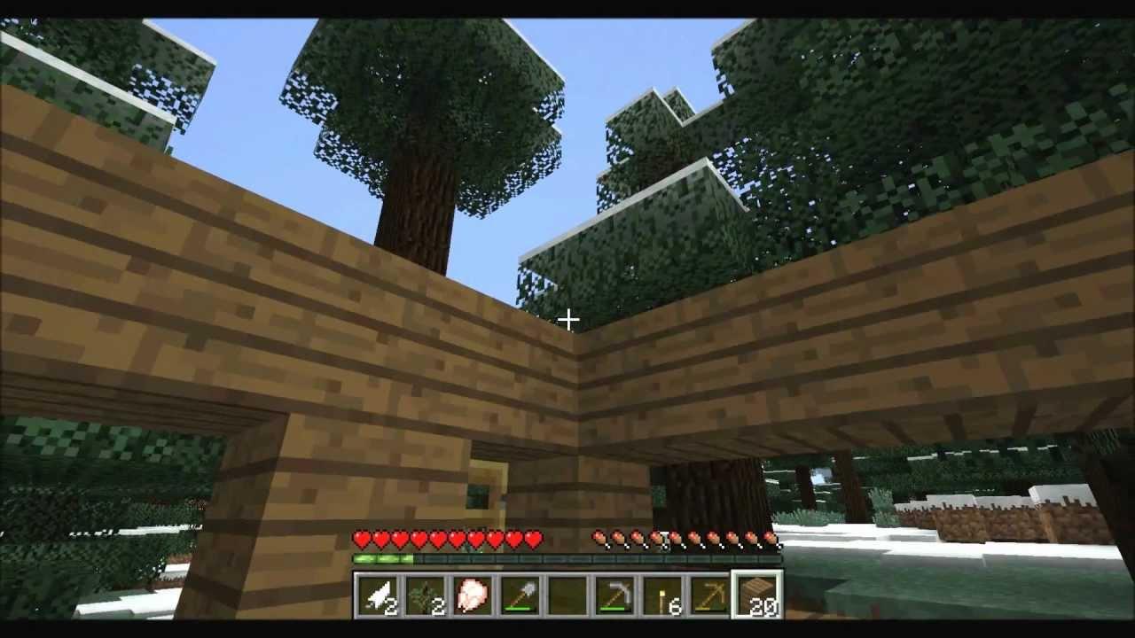 Minecraft beginners 10