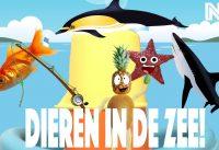 Vissen en zeedieren leren voor kinderen. 3