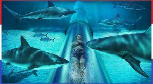 Top 10 coole waterglijbanen 4