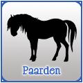 Paardenfilmpjes online kijken